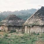 ¿Qué son las Comunidades Campesinas y Nativas? Una perspectiva Jurídica