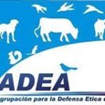 ADEA PUCP