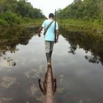 ¡Desastre ambiental en la Amazonía! : Cuestionamientos en torno al modelo económico en el marco de la Campaña Electoral