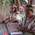 """¿Cerrando la brecha de implementación del Convenio N° 169 de la OIT? Las medidas """"consultadas"""" en los proyectos mineros en el Perú"""