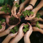 Efeméride del día 26 de enero: Día de la educación ambiental