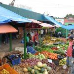Los precios de los productos de primera necesidad en tiempos de desastres naturales