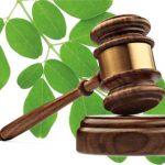 Acceso a la justicia ambiental y denuncias ambientales