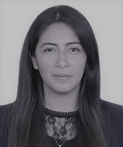 Romy Castillo Villar