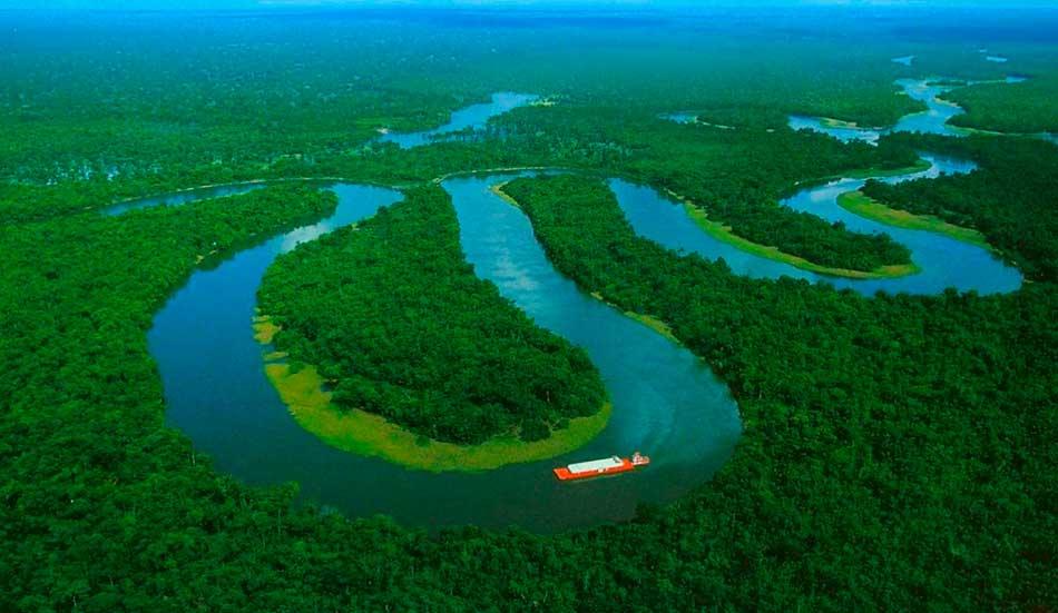 Manejo forestal comunitario en la Amazonía peruana