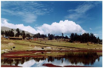 La posesión del comunero integrante de una Comunidad Campesina o Nativa