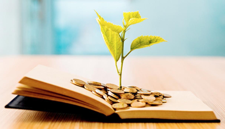 Educación financiera versus comportamiento irracional y emotivo