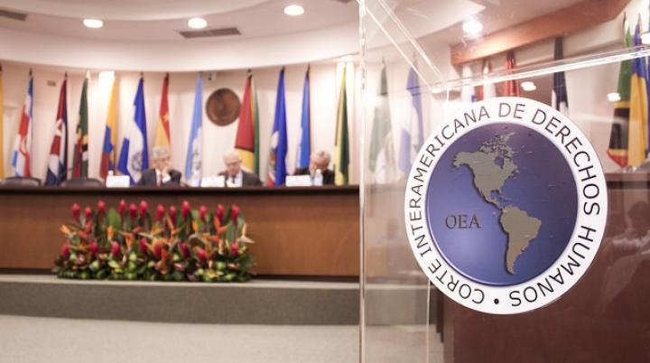 El control de convencionalidad y los estándares de la Corte IDH: fundamentos y críticas sobre la fuerza vinculante de los estándares interamericanos